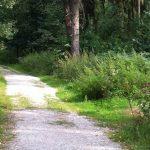 Segway fahren im Teutoburger Wald Bielefeld mieten
